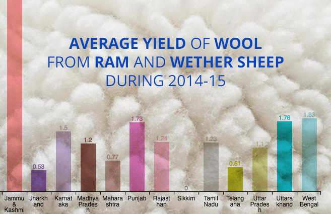 Banner of Average Yield of Wool from Ram and Wether Sheep during 2014-15