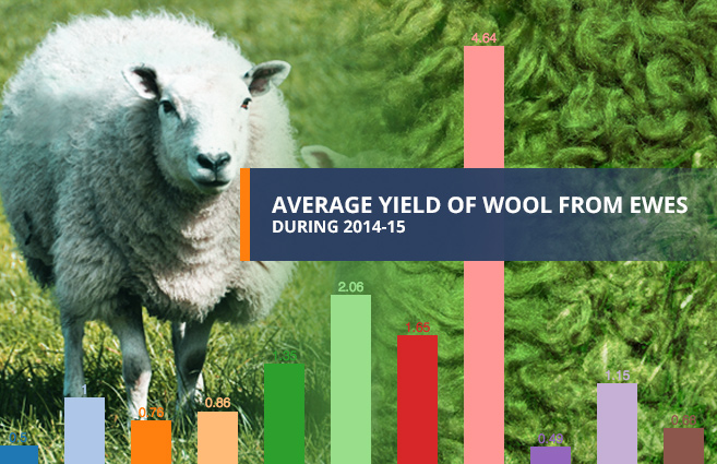 Banner of Average Yield of Wool from Ewes during 2014-15