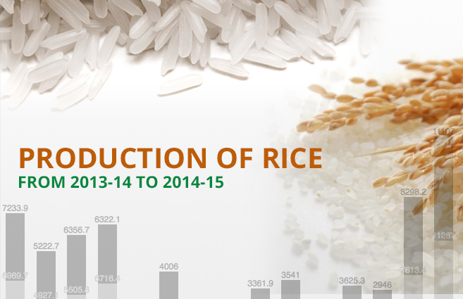 Banner of Production of Rice from 2013-14 to 2014-15