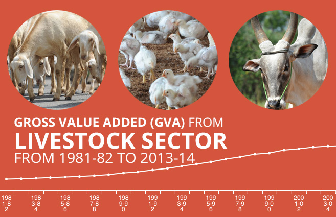 Banner of Gross Value Added (GVA) from Livestock Sector from 1981-82 to 2013-14