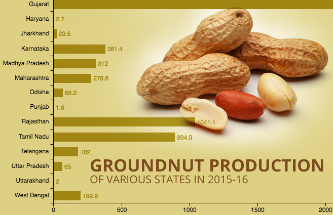 Banner of Groundnut Production of Various States in 2015-16