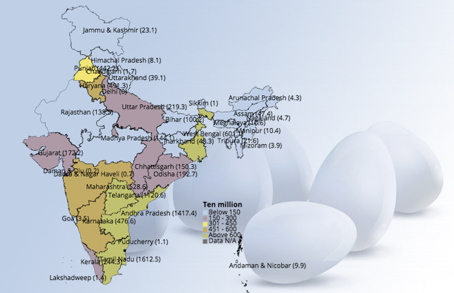 Banner of State/UT-wise Production of Eggs in India from 2009-10 to 2015-16