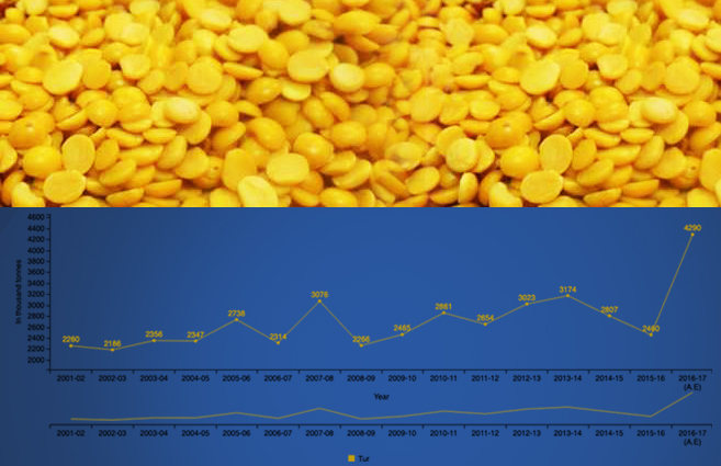 Banner of Production of Tur Pulses in India from 2001-02 to 2016-17