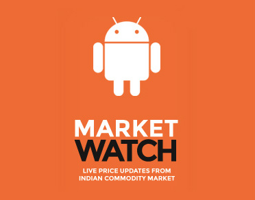Banner of Market Watch – Price in India