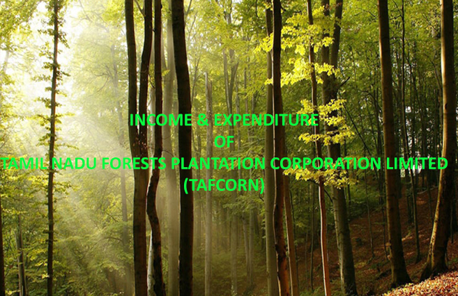 Banner of Tamil Nadu Forest Plantation Corporation, Tiruchirapalli Income and Expenditure (Revised Estimate) : SHB 2018