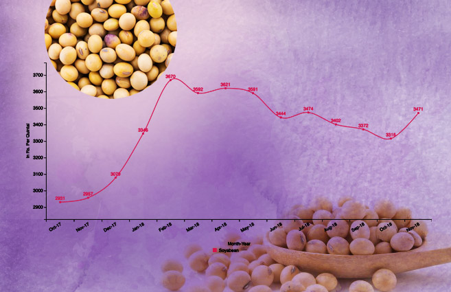 Banner of Average Monthly Wholesale Price of Soyabean (Kharif Crop) from October-2017 to November-2018