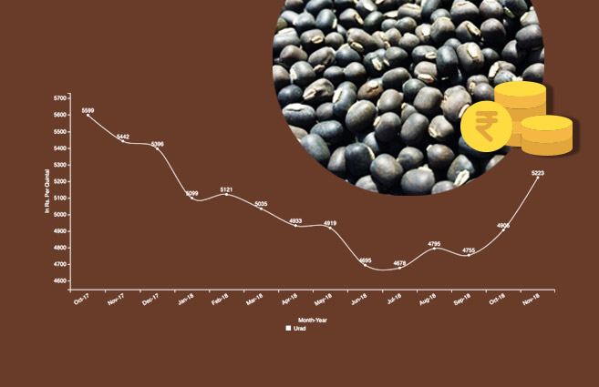Banner of Average Monthly Wholesale Price of Urad (Kharif Crop) from October-2017 to November-2018