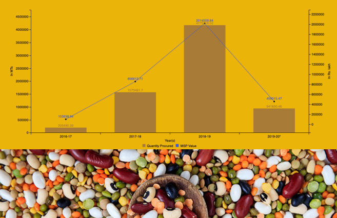 Banner of Procurement of Pulses at MSP under Price Support Scheme from 2016-17 to 2019-20